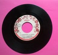 IL CANZONIERE DEI PICCOLI: IL MERLO HA PERSO IL BECCO, FRA MARTINO SIGNAL 1970 45 GIRI - Musik & Instrumente
