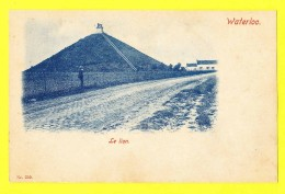 * Waterloo (Waals Brabant - Bruxelles) * (Nr. 265) Le Lion, Animée, Rare, Old, CPA, Unique, Panorama, Vue Générale - Waterloo