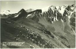 73 - Savoie - Peisey Nancroix - La Grande Casse - Massif De Bellecote - France