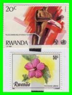 RWANDA  ( AFRICA  ) - 2 SELLOS AÑO 1981 - Rwanda