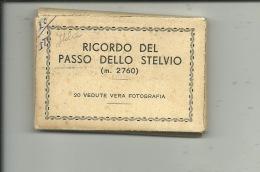 Ricordo Del Passo Dello Stelvio  ( 20 Snapshots - Little Views ) - Sondrio