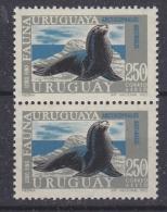 Uruguay 1970 Antarctica / Sealion 1v  (pair) ** Mnh (30388) - Uruguay