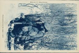 US ALASKA / Missionnaire Posant Des Pièges à Lapins / - Autres