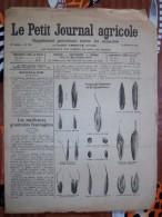 LE PETIT JOURNAL AGRICOLE 12/12/1920 AVEC PUB Les Meilleures Graminées Fourrageres16 PAGES Manque 1 Feuille - Livres, BD, Revues