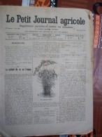 LE PETIT JOURNAL AGRICOLE 21/07/190? AVEC PUB Culture Du Riz En France 16 PAGES - Livres, BD, Revues