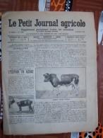 LE PETIT JOURNAL AGRICOLE 10/10/1920 AVEC PUB Tareau Frisou Elevage En Alsace 16 PAGES Manque 1 Feuille - Livres, BD, Revues