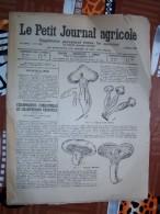 LE PETIT JOURNAL AGRICOLE 03/10/1920 AVEC PUB Champignons Comestibles Et Vénéneux 16 PAGES Manque 1 Feuille - Livres, BD, Revues