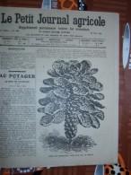 LE PETIT JOURNAL AGRICOLE 26/04/1914 AVEC PUB Chou De Bruxelles 16 PAGES Manque 1 Feuille - Livres, BD, Revues