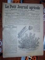 LE PETIT JOURNAL AGRICOLE 10/05/1914 AVEC PUB FOURRAGES ANNUELS 16 PAGES Manque 1 Feuille - Livres, BD, Revues