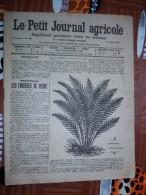 LE PETIT JOURNAL AGRICOLE 25/01/1914 AVEC PUB Les Fougeres De Serre 16 PAGES Manque 1 Feuille - Livres, BD, Revues
