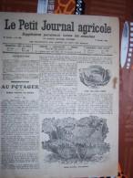 LE PETIT JOURNAL AGRICOLE 11/01/1914 AVEC PUB Chou Quintal D'Auvergne 16 PAGES Manque 1 Feuille - Livres, BD, Revues