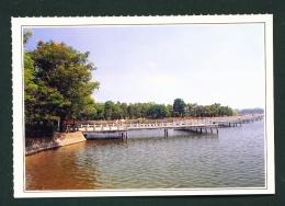 TAIWAN  -  Cheng Chin Lake  Unused Postcard - Taiwan