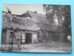 Typische Limburgse Hoeve LOMMEL () Anno 19?? ( Zie/voir Foto Voor Details ) !! - Lommel