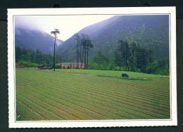 TAIWAN  -  Hoping  Wulin Farm  Unused Postcard - Taiwan