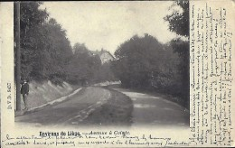 LIEGE : COINTE  Avenue à Cointe - Liege