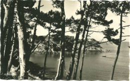 35 - Cancale - Promenade Vers La Pointe Du Grouin - Cancale