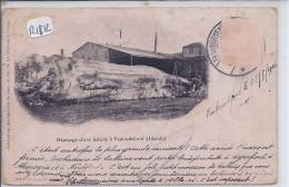 ISLANDE- DEPECAGE D UNE BALEINE A FASKRUDSFJORD- RARE- 1906 - Islandia