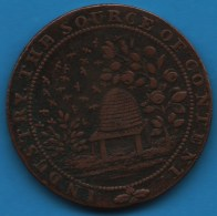 SUSSEX WINCHELSEA HALFPENNY 1794 Richard Maplesden's Beehive   DH-40 ABEILLES - Professionals/Firms
