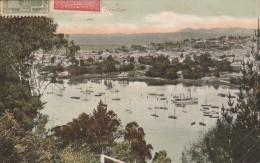 Tasmania - 1909 - Trevallyn   - Scan Recto-verso - Australie