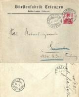 """Motiv Brief  """"Bürstenfabrik Triengen""""                      1913 - Suisse"""