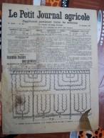 LE PETIT JOURNAL AGRICOLE 19/11/1911 AVEC PUB 16 PAGES   Manque 1 Feuille Plantation Fruitiere Pour Garniture - Livres, BD, Revues