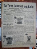 LE PETIT JOURNAL AGRICOLE 21/04/1912 AVEC PUB 16 PAGES   Manque 1 Feuille LES OEILLETS - Livres, BD, Revues