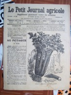 LE PETIT JOURNAL AGRICOLE 7/09/1913 AVEC PUB 16 PAGES LE CELERI Manque 1 Feuille - Livres, BD, Revues