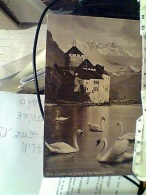 SCHWEIZ SUISSE SWITZERLAND SVIZZERA   CHATEAU DE CHILLON  CIGNI N1935 FM2518 - VD Vaud