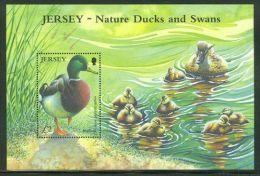Jersey - 2004 Geese Birds Block MNH__(THB-1553) - Jersey