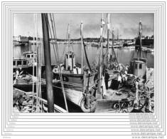 CPSM  CONCARNEAU - Le Port - Concarneau