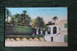 BISKRA - Jardins Landon - Biskra