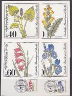 Berlin 1981 Plants & Flowers 4v Maxicards (30430) - [5] Berlijn