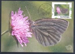 2016 Maximum Card Butterfly Schmetterling Papillon Mariposa International Day Of Biotic Diversity; Pieris Bryoniae, Rare - Papillons
