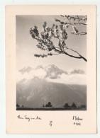 ° Autriche - Austria - Verlag: Dr. A. DEFNER, N°  A 1347 - 10,5 X 15 Cm - Autriche