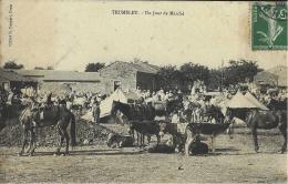 TRUMELET /ORAN - Un Jour De Marché  - Commune De Tiaret  - Cliché G. Gaspari - Altre Città