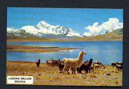 BOLIVIA  -  Laguna Milluni  Unused Postcard - Bolivia
