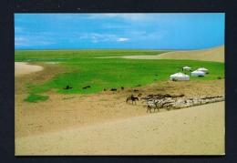 MONGOLIA  -  Encampment  Unused Postcard - Mongolia