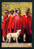 ECUADOR  -  Natives Of Cotopaxi Province  Unused Postcard - Ecuador