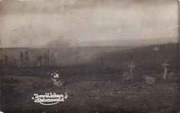 CP Photo 14-18 LE BOIS DES CAURES (Rabenwald, Près Verdun) - Une Vue Du Champ De Bataille, Tombe (A148, Ww1, Wk 1) - Non Classés