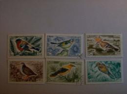 Liban Série Oiseaux N°250 à 255 OB  Annee 1965 - Libanon