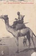 MEHARISTE SOUDANAIS DROMADAIRE ATTELAGE TYPE SOUDAN  AFRIQUE - Soudan