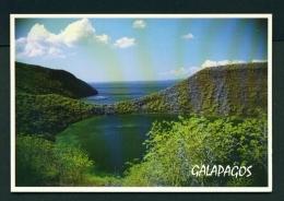 ECUADOR  -  Galapagos  Isabella Island  Darwin's Lake  Unused Postcard - Ecuador