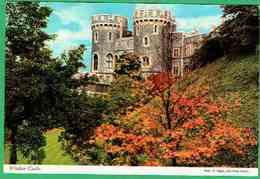 Cte - 58 -   Windsor Castle - Royal Palaces - Windsor Castle