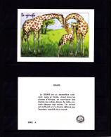 Les Animaux, La Girafe,  Editions Educatives, Scolaire, Illustrateur Calvet-Rogniat - Unclassified
