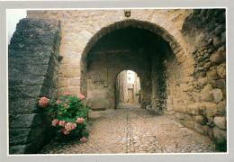 JOYEUSE (07, Ardèche) : Vieille Porte (non Circulée, Neuve) - Joyeuse