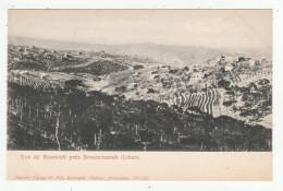 Liban - Vue De Roumieh Près Broummanah - Dos Simple - éd. Dimitri Tarazi, N°483, Carte De Turquie - Liban