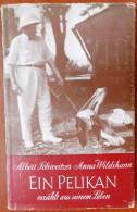 Albert SCHWEITZER : Ein Pelikan Erzählt Aus Seinem Leben (Richard Meiner Verlag) - Biographies & Mémoires