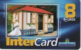 ANTILLES FRANCAISES-INTERCARD DAUPHIN TELECOM 8€-PHILIPSBURG LA CASE-3000EX - Antilles (Françaises)