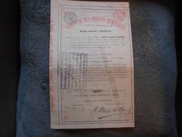 """Action""""Cie Des Produits Kemmerich """" Anvers 1890 (Elevage Bétail En Argentine,extraits De Viande( Liebig ),bouillon,cuir) - Landbouw"""