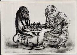 CPSM Jeu échecs Chess Circulé 10 X 15 Singe - Echecs